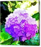 Hydrangea In Watercolor Canvas Print