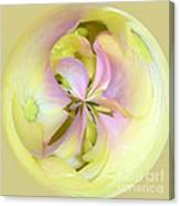 Hydrangea Kaleidoscope Canvas Print