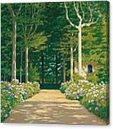 Hydrangeas On A Garden Path Canvas Print
