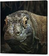 I Am Ready For My Close-up Canvas Print