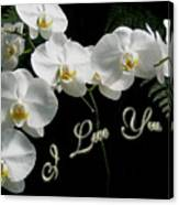 I Love You Greeting - White Moth Orchids Canvas Print