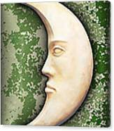 I See The Moon 3 Canvas Print