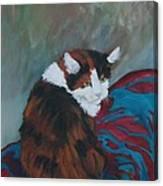 I Want My Lap Canvas Print