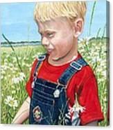 Ian's Field Of Dreams Canvas Print