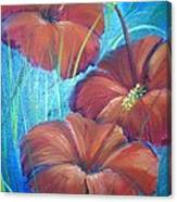 Ibiscos Del Corazon Canvas Print