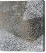 Ice 7 Canvas Print