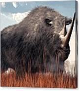 Ice Age Rhino Canvas Print
