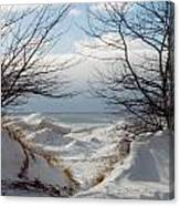 Ice Between The Trees Canvas Print