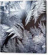 Ice Crystals Canvas Print