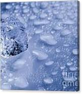 Ice Cube With Copyspace Canvas Print