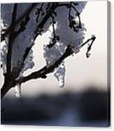 Ice Drop Canvas Print