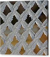Ice Fence Canvas Print