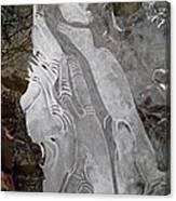 Ice Flow 1 Canvas Print
