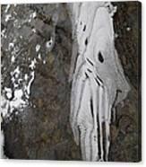 Ice Flow 8 Canvas Print