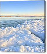 Ice Goosebumps Canvas Print