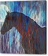 Ice Horse Canvas Print