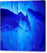 Ice Is Nice Canvas Print