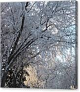 Ice On The 6th Canvas Print
