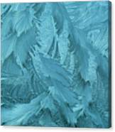 Ice Patterns Formed On Glass Canvas Print