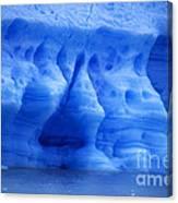 Ice Sculpture Canvas Print