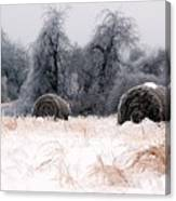Ice Storm And Hay Bales In The Blue Rdige Mountains Canvas Print