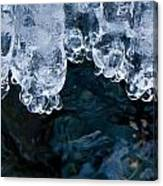 Ice Toes Canvas Print