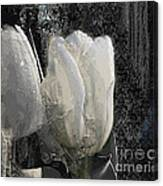 Ice Tulip  Canvas Print