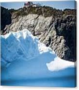 Ice X Canvas Print