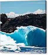 Ice Xxiii Canvas Print
