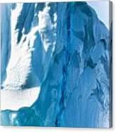 Ice Xxvi Canvas Print