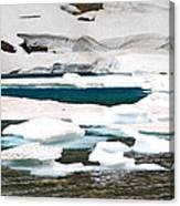 Icebergs In August Glacier International Peace Park Canvas Print