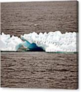 Iceburg With Passenger Canvas Print
