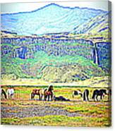 the Icelandic summer scene contains almost everything  Canvas Print