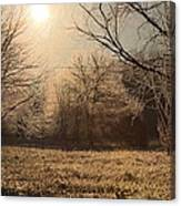 Icey Beauty Canvas Print