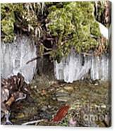 Icicles In The Stream Canvas Print