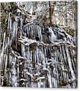 Icicles On Forbidden Drive Canvas Print