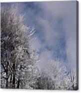 Icy Blues Canvas Print