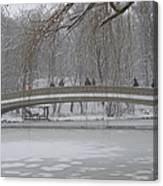 Icy Central Park Canvas Print