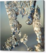 Icy Closeup Canvas Print