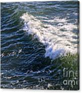 Icy Cold Ocean Water Canvas Print