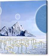 Icy Desert Canvas Print