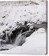 Icy Flow Canvas Print