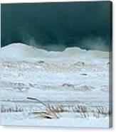 Icy Lake Michigan Canvas Print