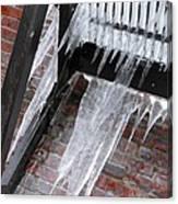 Icy Landing Canvas Print