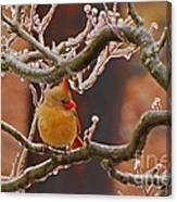 Icy Perch Canvas Print