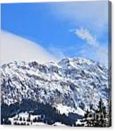 Icy Profile Canvas Print