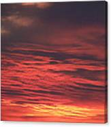 Icy Red Sky Canvas Print