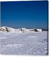 Icy Shore Canvas Print