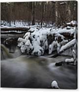 Icy Waters Canvas Print