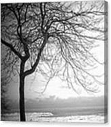 Icy Waters Of Lake Michigan Canvas Print